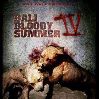 Bloody Pit Bull Fights Related Keywords & Suggestions - Bloody Pit ...
